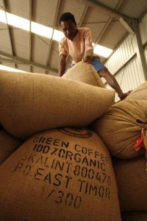 An East Timorese worker moves a sack of coffee at a warehouse outside Dili July 3, 2007. East Timor production of up to 45,000 tons of Arabica beans a year and most of beans go to the United States, including the Seattle-based coffee chain Starbucks, while 30 percent goes to Europe, according to government figures. Picture taken July 3, 2007. REUTERS/Beawiharta (EAST TIMOR) - GM1DVPXFAYAA